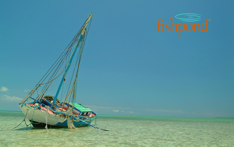 Shipwrecked Boat and Fishpond Logo